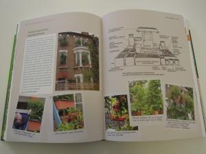 urban gardeners aufgepasst handbuch bio balkongarten biorama. Black Bedroom Furniture Sets. Home Design Ideas