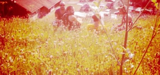 rockt im gruenen
