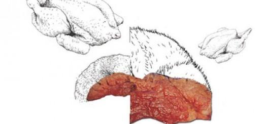 zukunft-des-Fleischessens