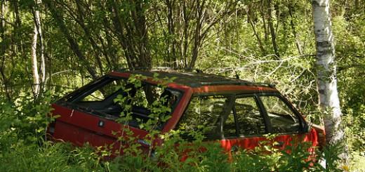 Auto in Natur