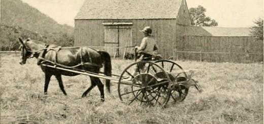 Bild: flickr.com/Internet Archive Book Images