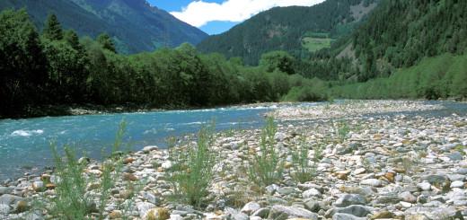 Die Lotto-Gelder sollen helfen, die letzte alpine Flusslandschaft an der Isel zu erhalten.