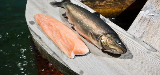 Fisch und Filet Holzplatte