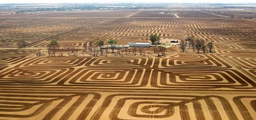 Vom Flugzeug seines Sohnes aus hat Brian Fischer seine Farm fotografiert. Bild: Brian Fischer