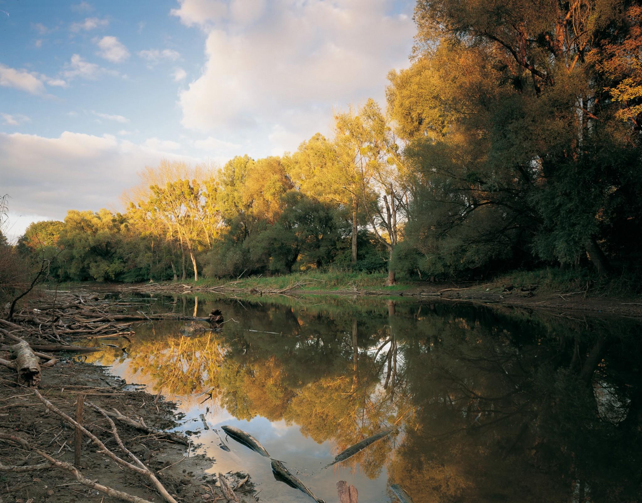 Foto: Popp. Nationalpark Donauauen