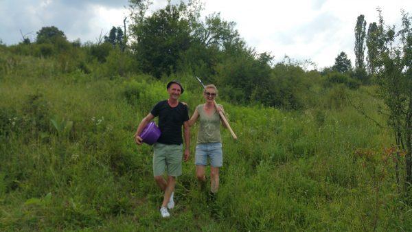Bosnia grows Organic - noch ein weiter und dorniger Weg