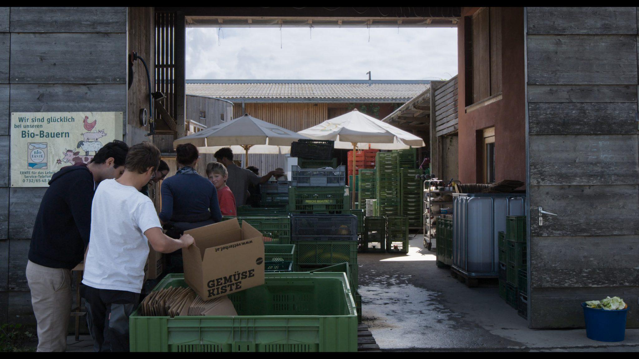 Alternative Direktvermarktung: Der Vorarlberger Vetterhof kennt seine Kundschaft – und die Konsumenten kennen Bauer und Hof. Hier wird das Bio-Gemüse für die Kisten-Abonnenten verpackt. (Foto: Allegro Film)