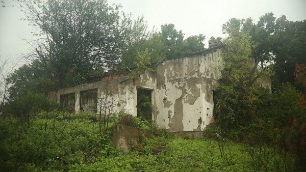 Bosnia grows Organic: Häuserruine in Bijelo Brdo
