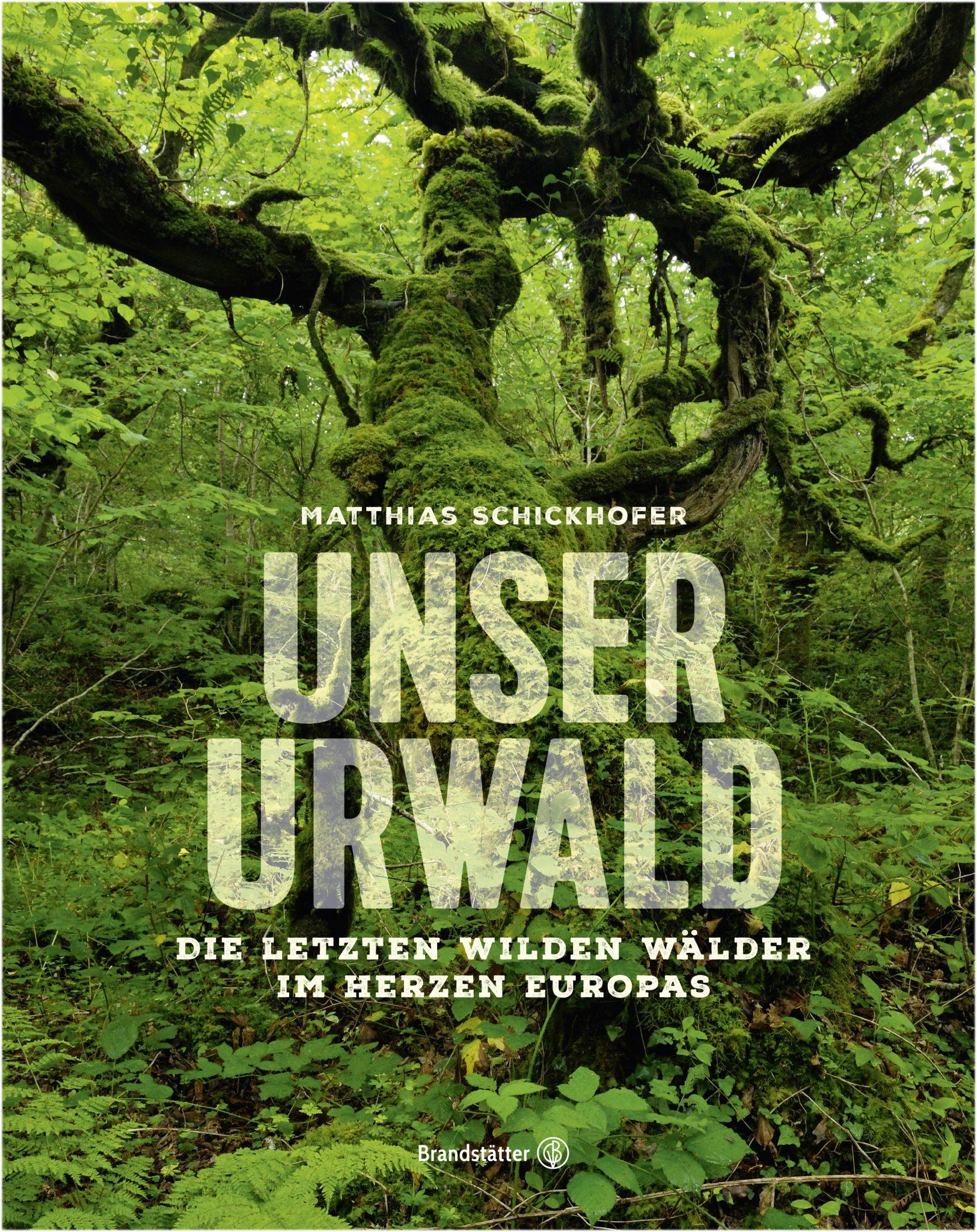"""In """"Unser Urwald"""" führt Autor, Umweltschützer und Fotograf Matthias Schickhofer an unbekannte Sehnsuchtsorte. Viele davon in Wochenendreichweite."""