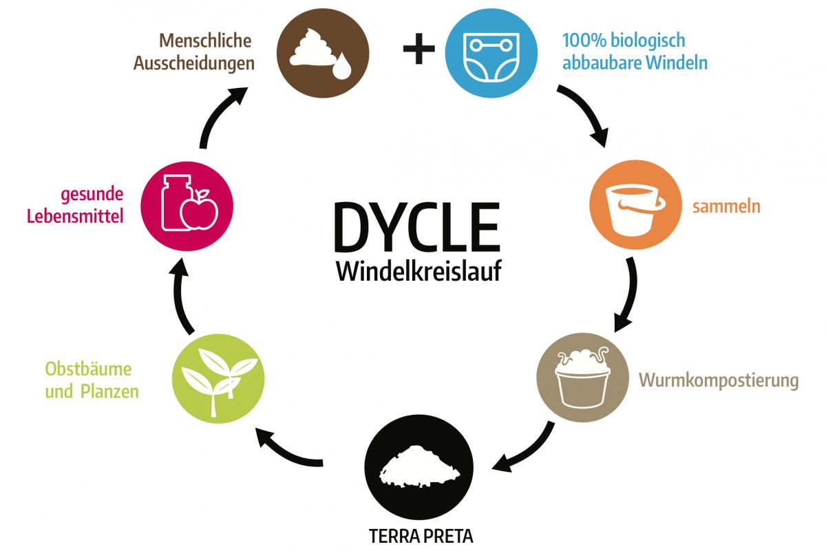 Dycle Windelkreislauf