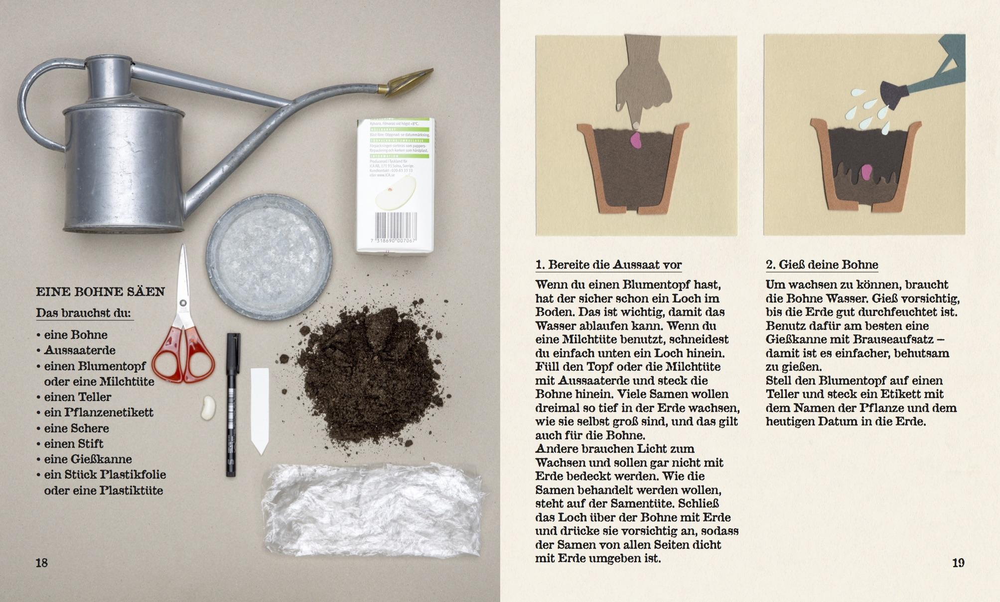 Vom Samen Zur Pflanze Kindergeschichte