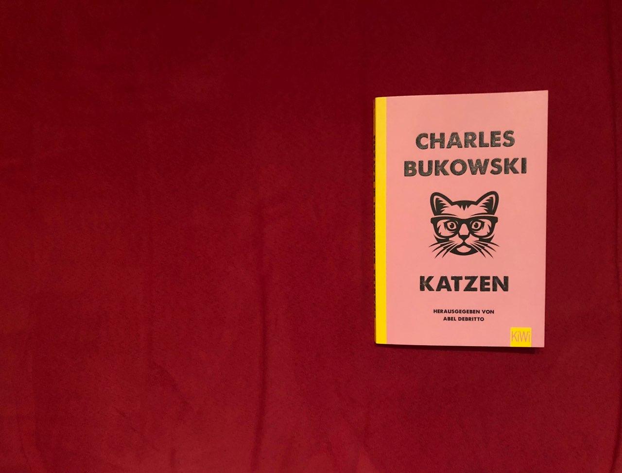 Das Simple Dasein Der Katze Unveröffentlichtes Von Charles