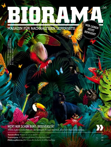 Biorama Cover